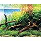 """Kompleksowe (akw. roślinne) - Kompleksowe nawozy typu \""""wszystko w jednym\"""" do akwarium roślinnego. Pozwalają dostarczyć niezbędne pierwiastki dla roślin za pomocą jednego, łatwego w stosowaniu preparatu. Pozwala to ograniczyć koszty posiadania akwarium i znacząco ułatwia jego regularną pielęgnację."""