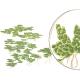 Z liśćmi na powierzchni - Rośliny pływające i gatunki, które tworzą liście kładące się na powierzchni wody.Tworzą udealne miejsce schronienia dla narybku i zapobiegają rozwojowi glonów w akwarium.
