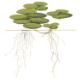 Rośliny pływające - Rośliny pływające na powierzchni wody.Stanowią świetną ochronę dla narybku i ograniczają wzrost glonów w akwarium.