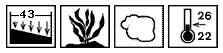 Anubias afzelii - rośliny akwariowe - kliknij aby zobaczyć wymagania roślin w akwarium