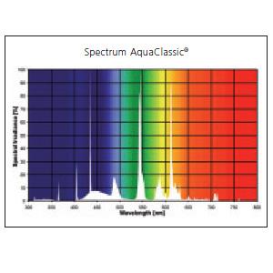 Świetlówka Sylvania AquaClassic 5000K 24W (55cm) - kliknij, aby powiększyć
