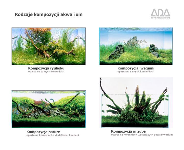 Rodzaje kompozycji i układy aranżacji akwarium