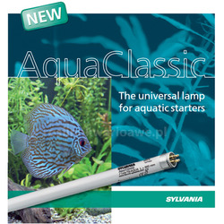 15W świetlówka T8 Sylvania AquaClassic 5000K (45cm) - 0002301