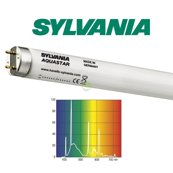 15W świetlówka T8 Sylvania Aquastar 10000K (45cm)