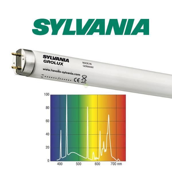 15W świetlówka T8 Sylvania Grolux 8500K (45cm)
