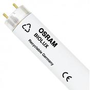 18W świetlówka T8 Osram Biolux 965 (6500K) (60cm) - L18/72-965