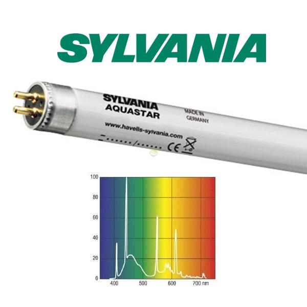 24W świetlówka T5 Sylvania Aquastar 10000K (45cm-nietypowa) - 0002820