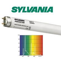 25W świetlówka T8 Sylvania Aquastar 10000K (74cm)