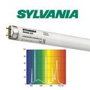 25W świetlówka T8 Sylvania Grolux 8500K (74cm) - 0001679
