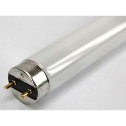 30W świetlówka T8 Sylvania Luxline Plus 865 6500K (90cm)