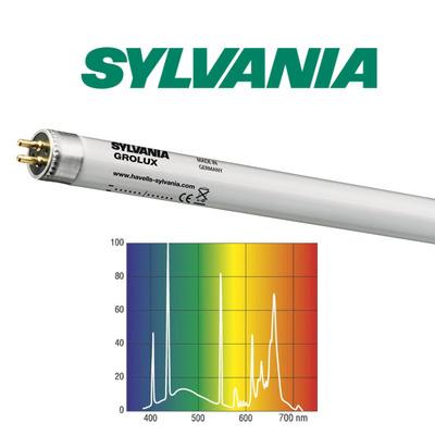 54W świetlówka T5 Sylvania Grolux 8500K (115cm) - 0002746