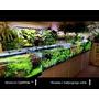 Akwarium OptiWhite 60x40x40 (6mm) 96l - odbiór osobisty