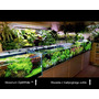 Akwarium OptiWhite 60x40x40cm (6mm) 96l - Full Opti
