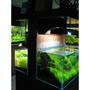 Akwarium OptiWhite 90x45x45 (10mm) 182l - wysyłka lub odbiór osobisty