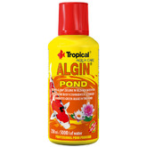 Algin pond [250ml] - na glony nitkowate (Spirogyra)