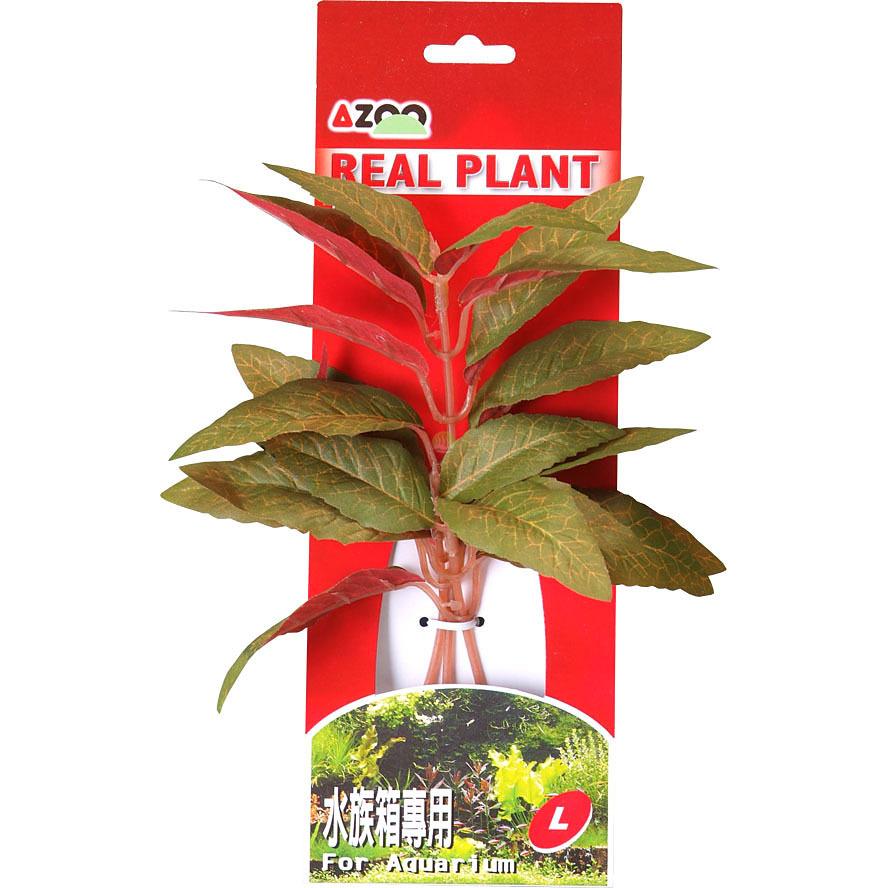 ALTERNANTHERA 8 (GREEN) [22cm] - Rośliny z miękkiego, tkanego materiału