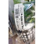 Anubias nana Bonsai - SONGROW (koszyk)
