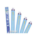 AZOO CORAL BLUE LIGHT 30W - 90cm - T8