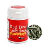 Benibachi Red Bee Anbitious [30g]