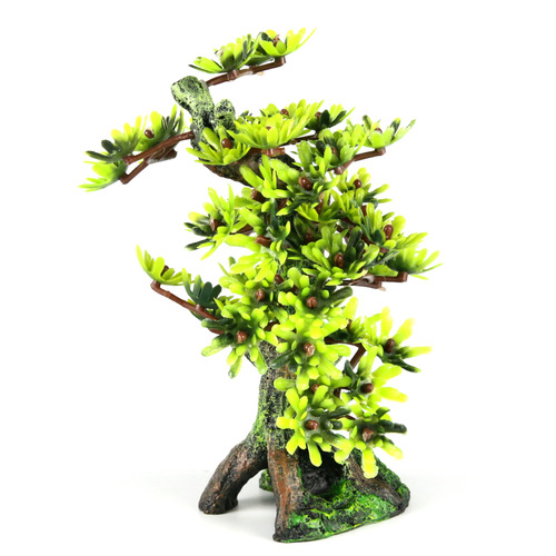 BONSAI MEDIO - Drzewo Bonsai M LIŚCIE 15cm/6