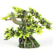 BONSAI MINI - Drzewo Bonsai S LIŚCIE 9,5cm/6