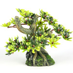 BONSAI MINI S [9.5x6cm] - drzewo bonsai z liśćmi
