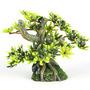BONSAI MINI S [9.5x6cm] - drzewo bonsai z liśćmi