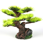 BONSAI MINI S [9,5cm/6] - drzewo bonsai z igłami (AquaDella)