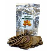 Catappa Leaves Medium [50 szt] - średnie liście ketapangu