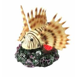 CORAL FISH [10.5x11.5x10.5cm] - ryba koralowa