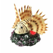 CORAL FISH - Ryba koralowa 10,5x11,5x10,5cm