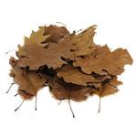 Deep Aqua liście dębu [1l] - garbniki i obniżenie pH