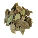 Deep Aqua liście orzecha włoskiego jesiennego [1l] - uzdatnianie wody