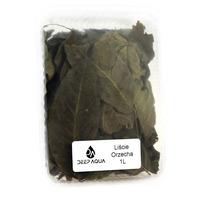 Deep Aqua liście orzecha włoskiego wiosennego [1l] - naturalny antybiotyk