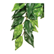 EXO TERRA roślina wisząca Fikus 70cm