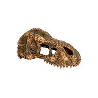 Exo Terra T-Rex skull - czaszka dinozaura