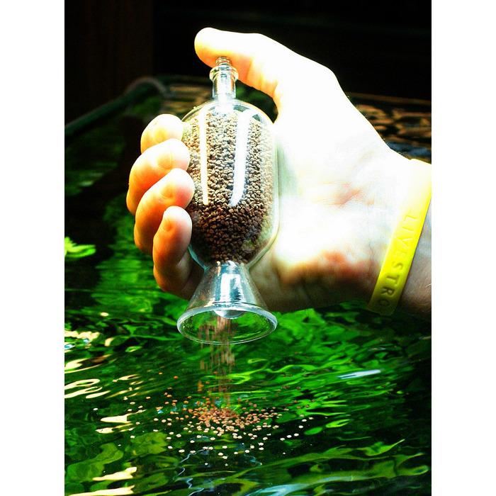 Glass feeder - szklany podajnik pokarmu