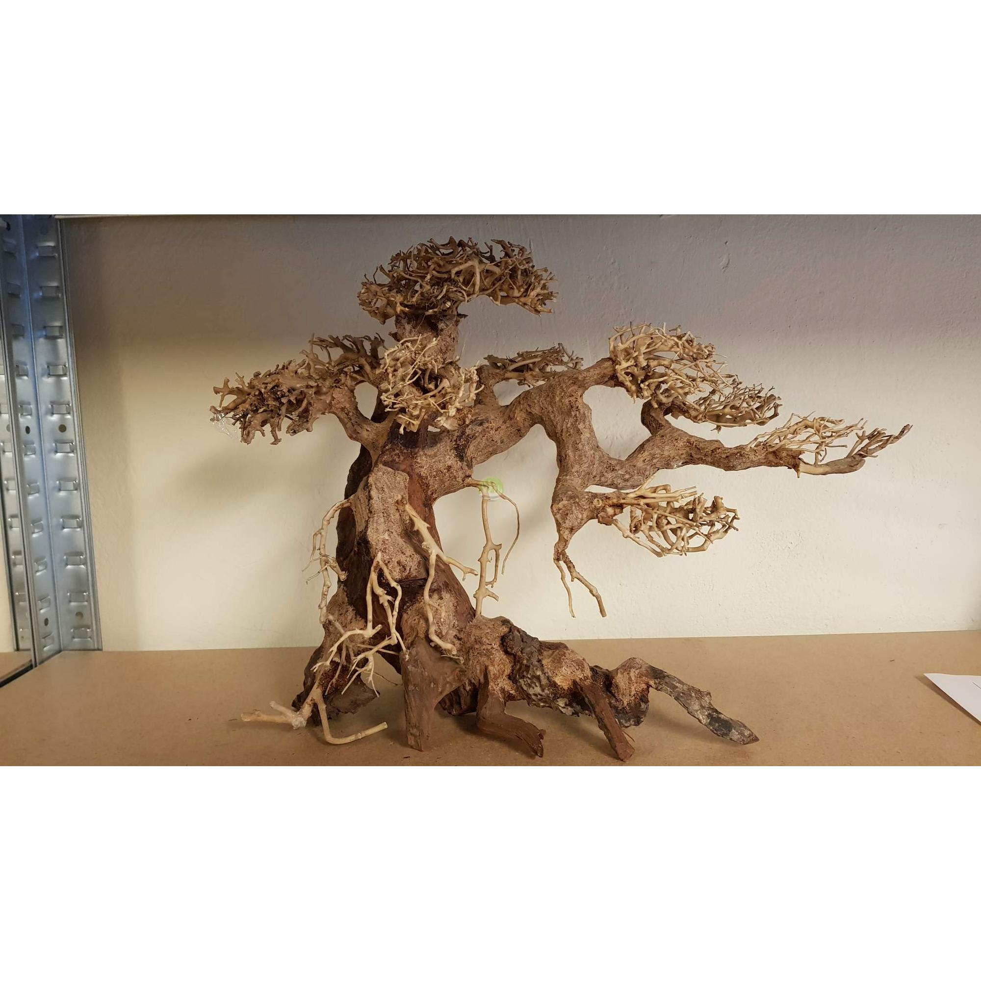 Studio Aranzacji Akwarium Gotowa Aranzacja Drzewko Rozmiar 35cm