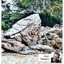 Gotowy layout 100x50x50cm Frodo Stone - wzór 1