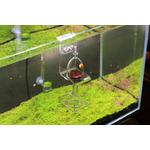 Hanging Feeder VIV - szklany karmnik kulisty wiszący