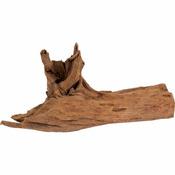 Ikola Korzeń Mangrowy Driftwood