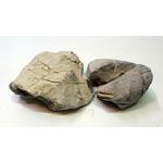 Ikola Skała shell vein rock grey