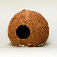 JBL Cocos Cava 3/4 L (111/95/111mm) - naturalna grota kokosowa