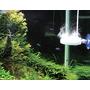 Jonizator Chihiros Doctor II SUPER [250-600l] - do akwariów roślinnych