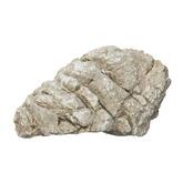 Kamienie Grey Moss Stone [1kg]