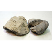 Kamienie Shell Vein Rock Grey [10kg] BOX