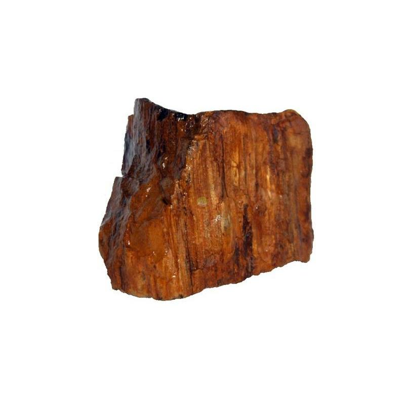 Kamienie Wood fossil [10kg] BOX - skamieniałe drewno