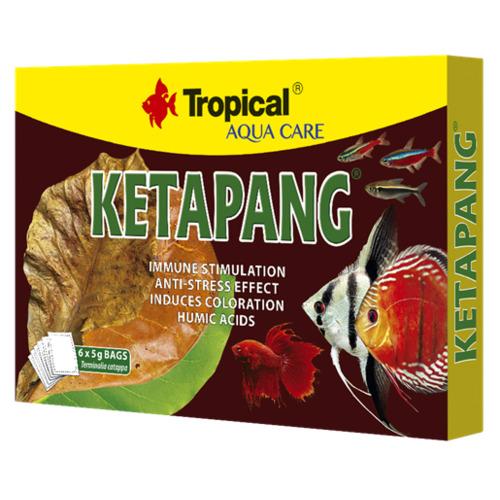 Ketapang - suszone liście migdałecznika morskiego [6szt] (34001)