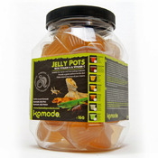 Komodo Jelly Pot Honey Jar - pokarm miód w żelu [60szt]