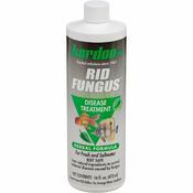 Kordon Rid-Fungus [118ml]